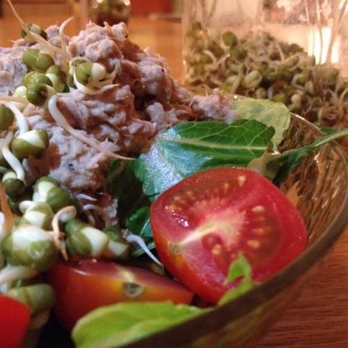 No Ordinary Tuna Salad