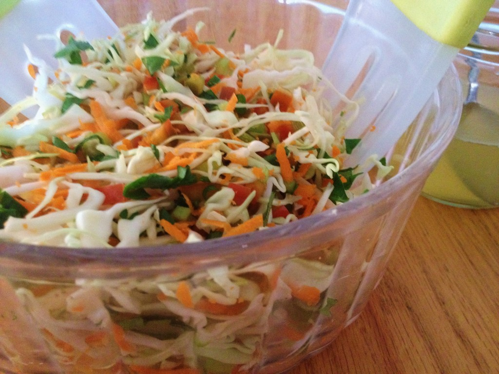 Aunt Dina's Tangy Coleslaw